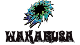 wakarusa festival review 2011