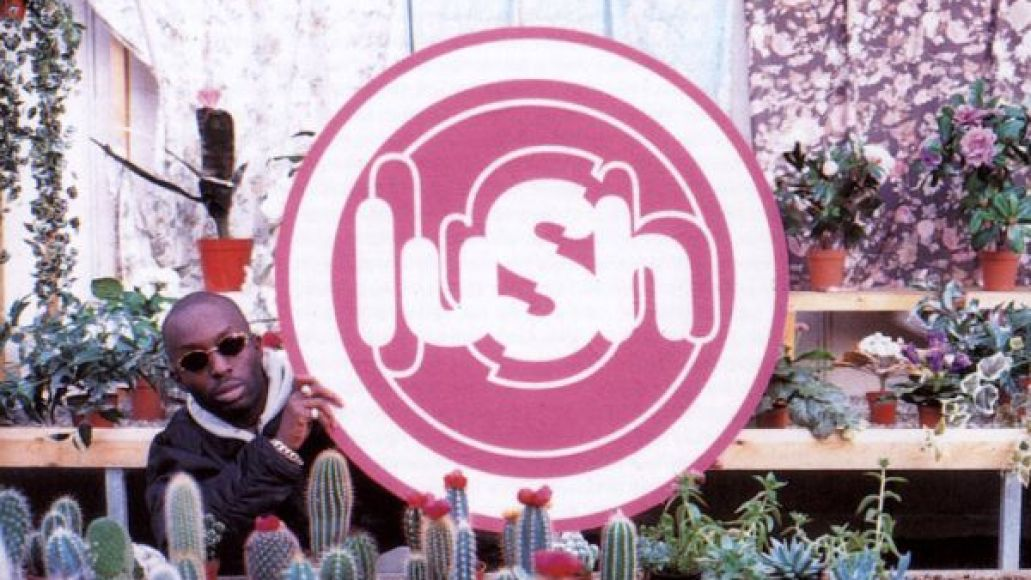 Interview: Emma Anderson (of Lush)