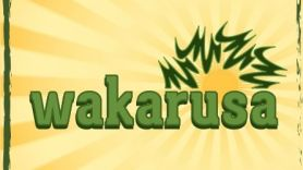 wakarusa music festival 2013