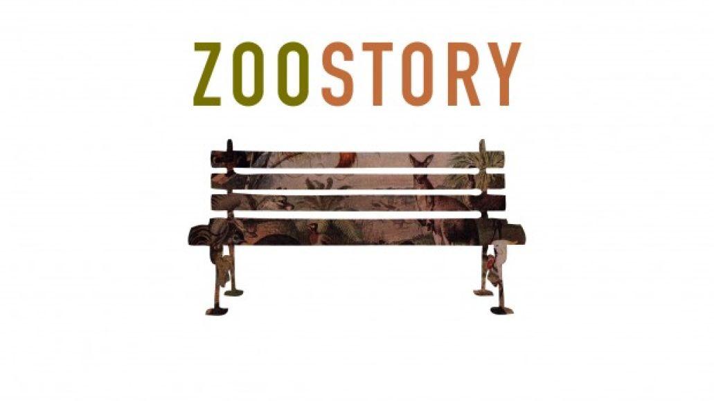 zoostory large