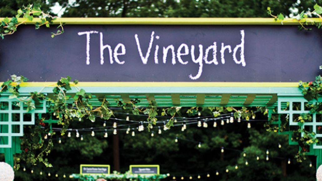 vineyard The Top 10 Moments of Firefly Music Festival 2013