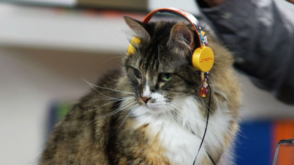 catheadphones The 25 Weirdest Pieces of Band Merchandise