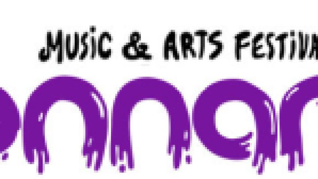 bonnaroo music and arts festival bonnaroo music and arts festival
