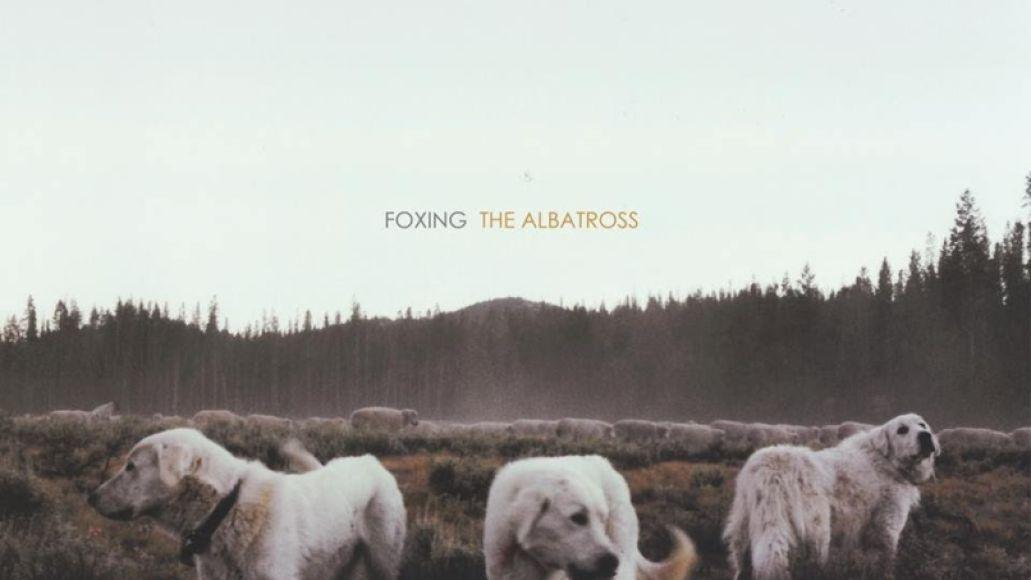 Foxing The Albatross
