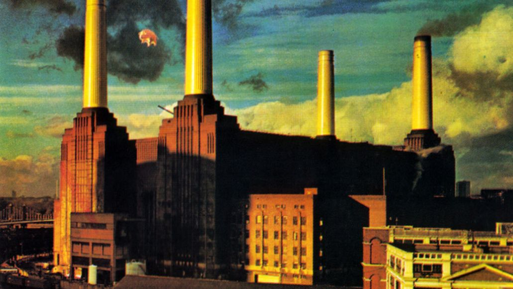 pink floyd animals Chicago architects want to hide Trump Tower logo with pigs inspired by Pink Floyds Animals
