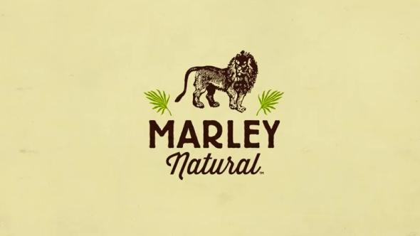 Bob Marley Pot