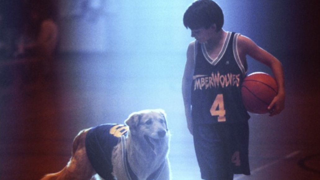 air bud buddy The 101 Greatest Dogs in Film History