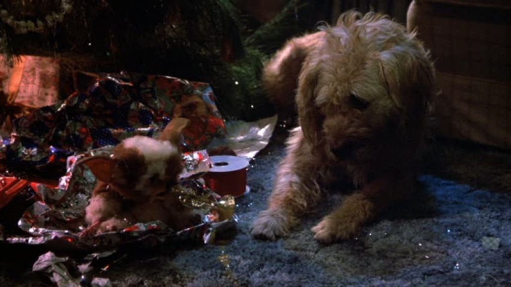 barney gremlins The 101 Greatest Dogs in Film History