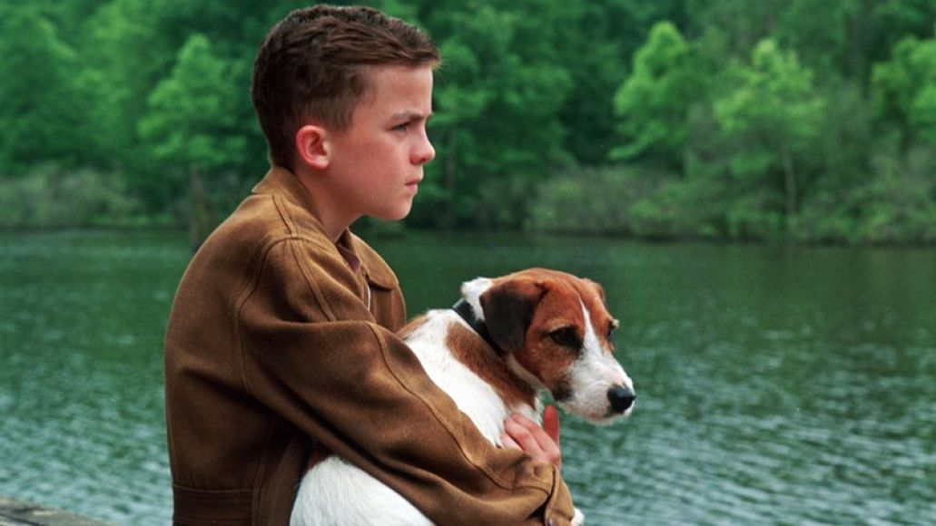 The 101 Greatest Dogs in Film History