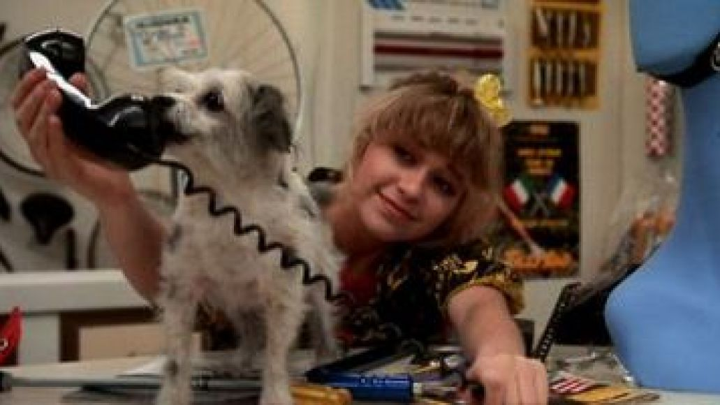 speck The 101 Greatest Dogs in Film History