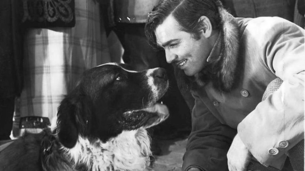 callofthewild e1427898240886 The 101 Greatest Dogs in Film History