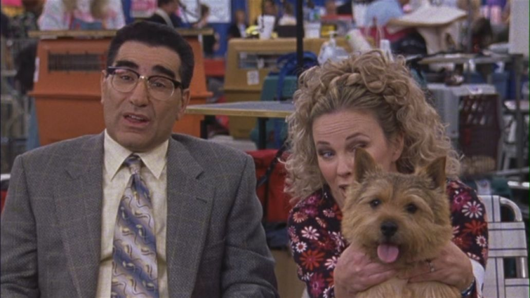 eugene levy winky best in show The 101 Greatest Dogs in Film History