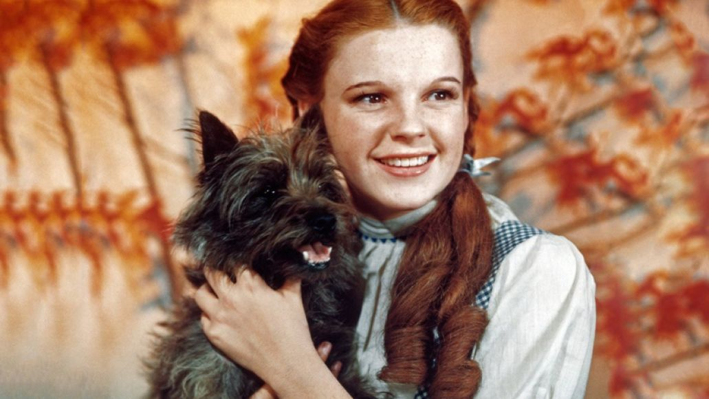 toto The 101 Greatest Dogs in Film History