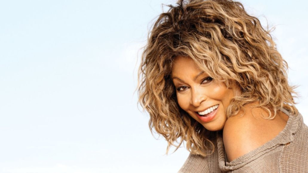 tina turner Wanted: 20 Acts to Shake Up Future Music Festivals