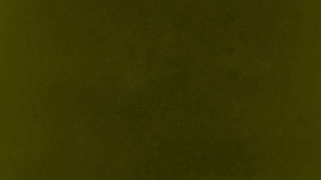 kendrick lamar untitled unmastered stream album listen Top 50 Songs of 2016