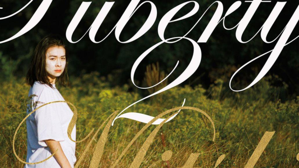 mitski puberty new album Top 100 Songs of the 2010s