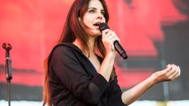 Lana Del Rey Cancels Postpones Israel Meteor Festival Palestine