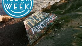 FIDLAR, Almost Free, Punk, New Album, Album of the Week