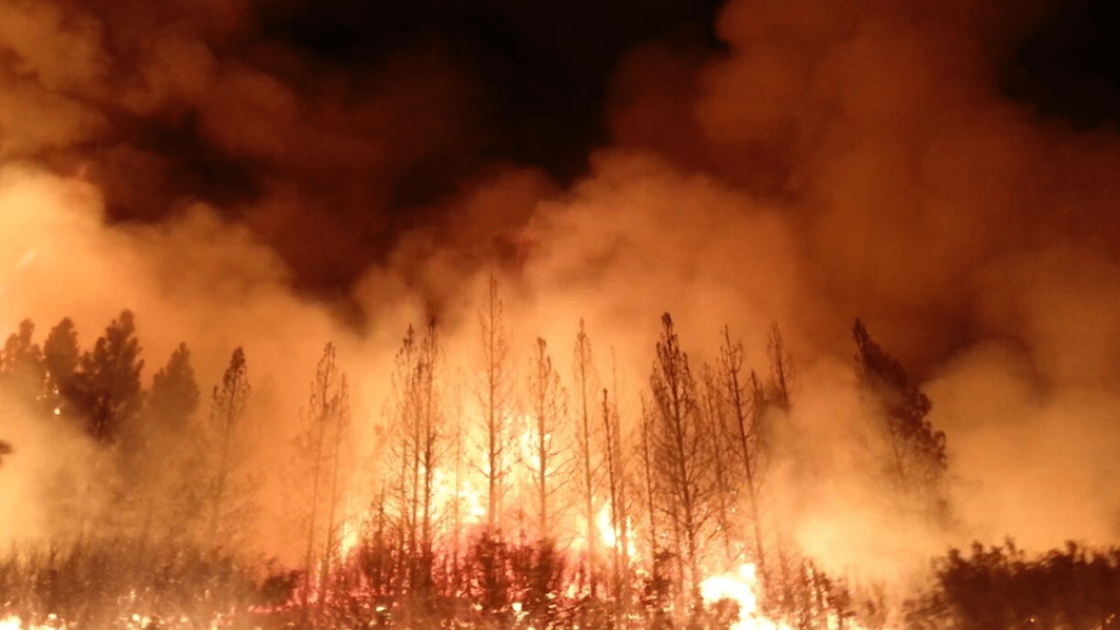 black pistol fire black halo origins california wildfires