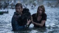 The Crawl Elisabeth Moss Shirley Offers Mesmerizing Madness: Review