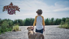 In the Tall Grass - Fantastic Fest