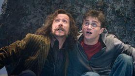 Harry Potter books banned Nashville catholic school magic curses, Harry Potter and the Order of the Phoenix