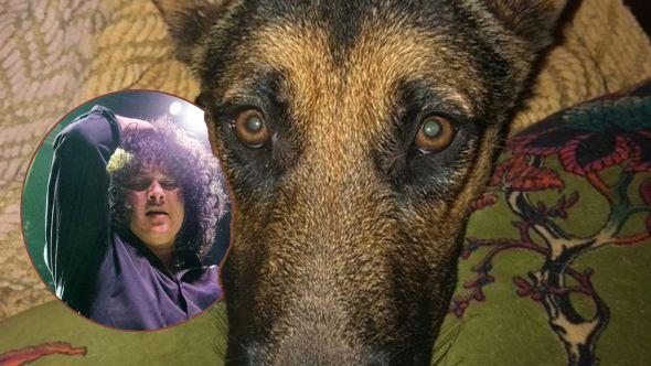 Cedric Bixler-Zavala's dog poison scientology