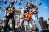 The Stowaways at Shiprocked 2020