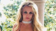 Britney Spears Redistribute Wealth Instagram Strike