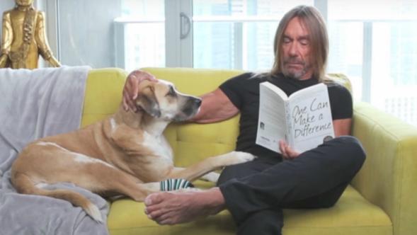 Iggy Pop and his dog