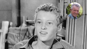 Ken Osmond as Eddie Haskell