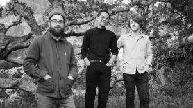 woods-strange-to-explain-album-streaming-new-music-release