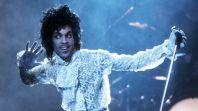 Prince Prince Is Now on TikTok