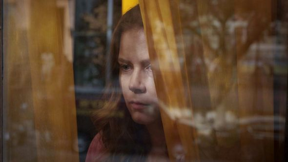 The Woman in Window Netflix Amy Adams movie stream (Netflix)