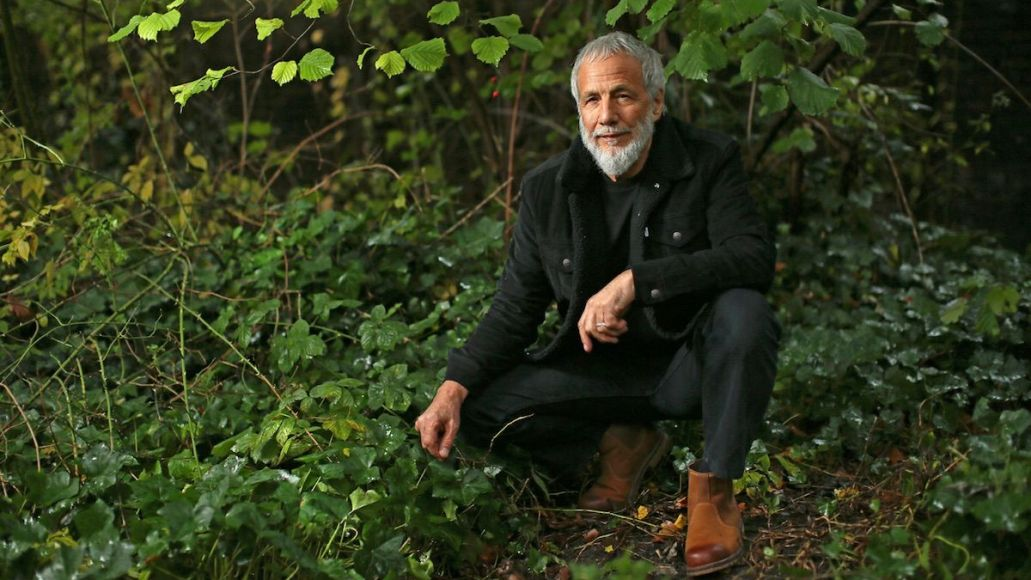 yusuf cat stevens father son new version stream release New Music Friday: 7 Albums to Stream