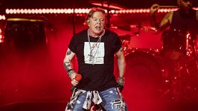 Axl Rose encourages voting