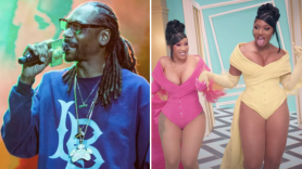 snoop dogg cardi b megan thee stallion wap too sexy