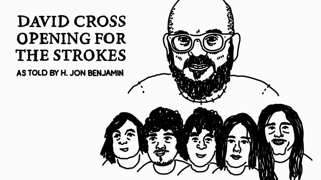 David Cross The Strokes