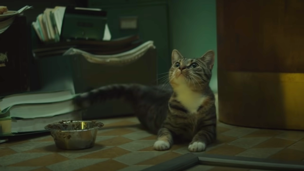 We Need to Talk About the Cat in the Loki Trailer