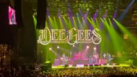 foo fighters dee gees bee gees you should be dancing madison square garden live performance debut new york city nyc