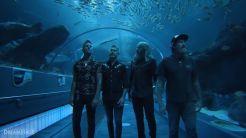 Mastodon Aquarium Show