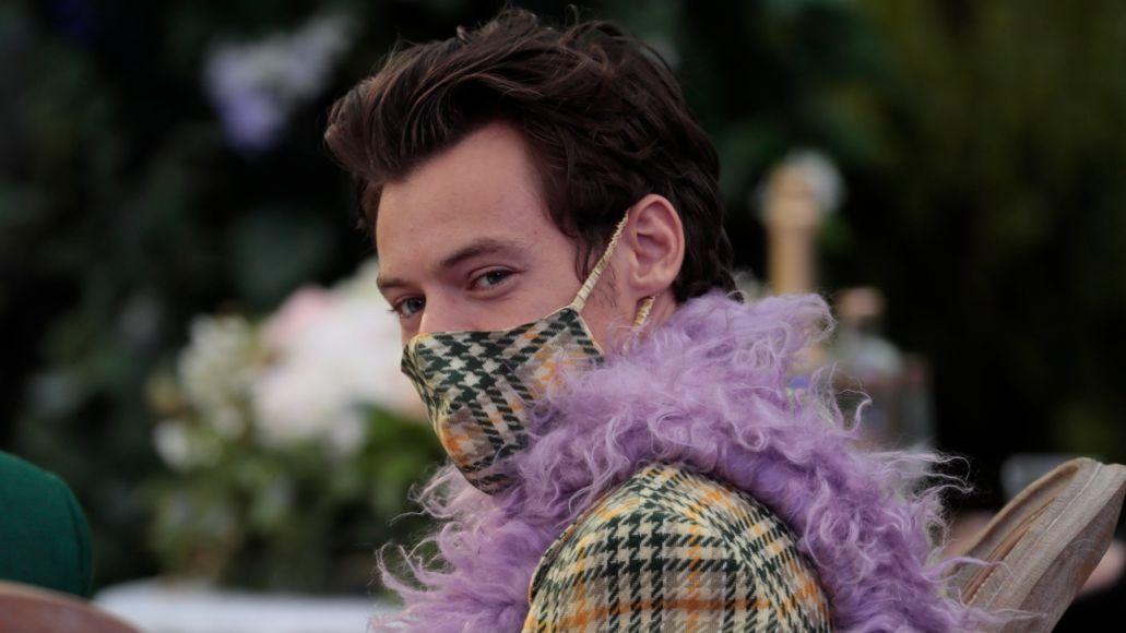 Harry Styles mask